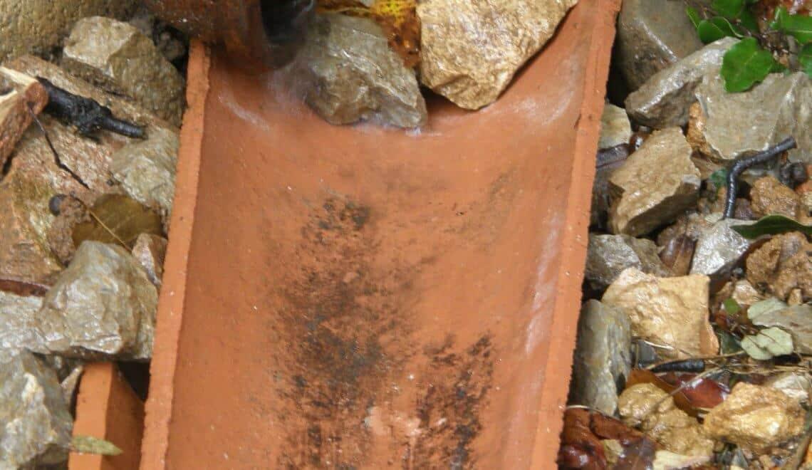 diriger l'eau de la gouttière optimise l'arrosage naturel