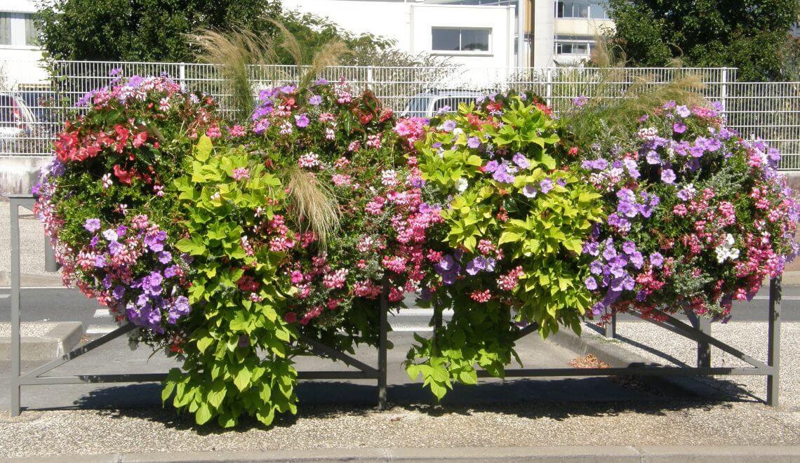 La plantation en jardinière, comment procéder ?