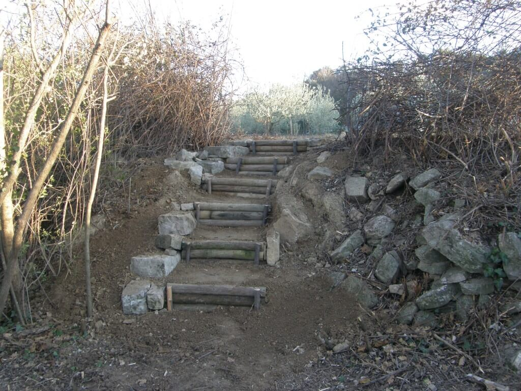 escalier en rondins