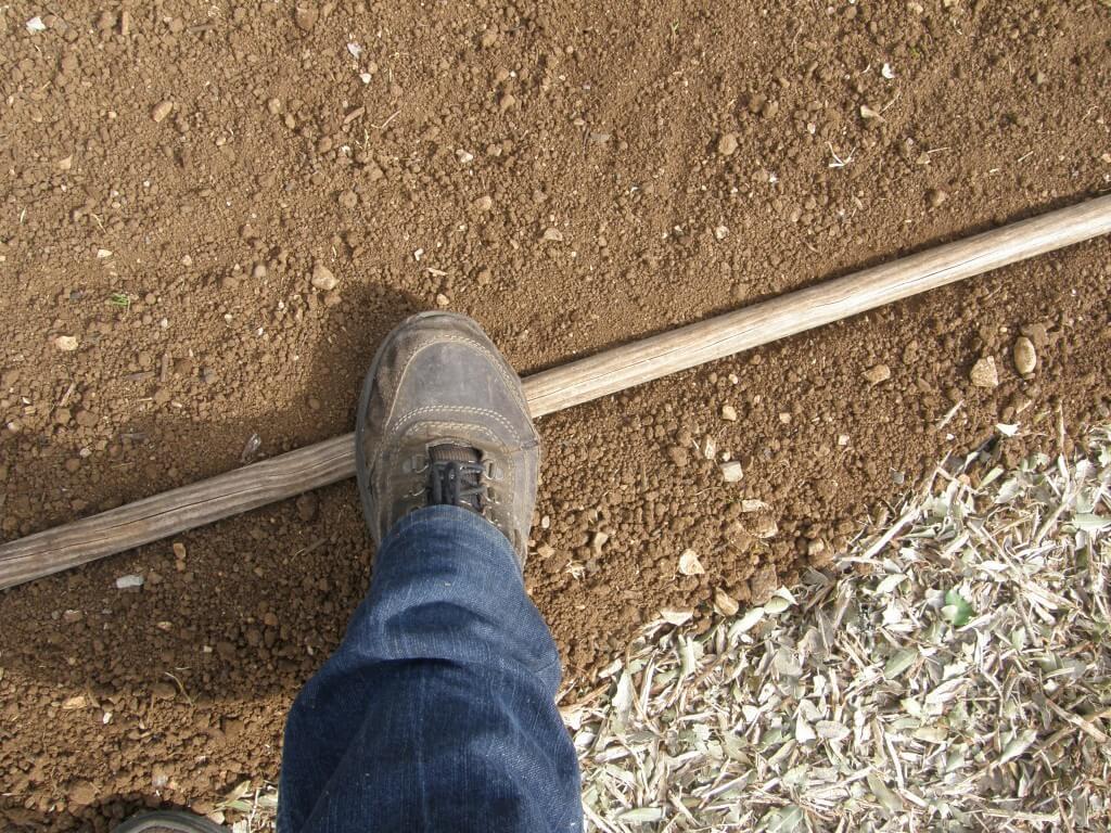le manche du râteau au sol et légère pression du pied
