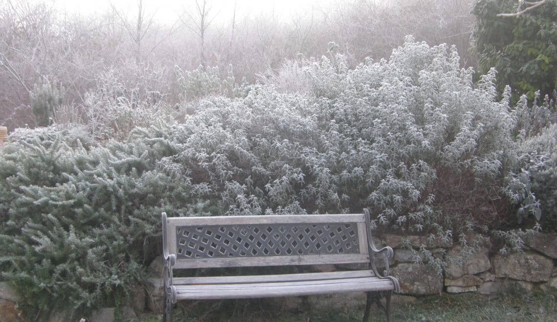 Humeur d'hiver