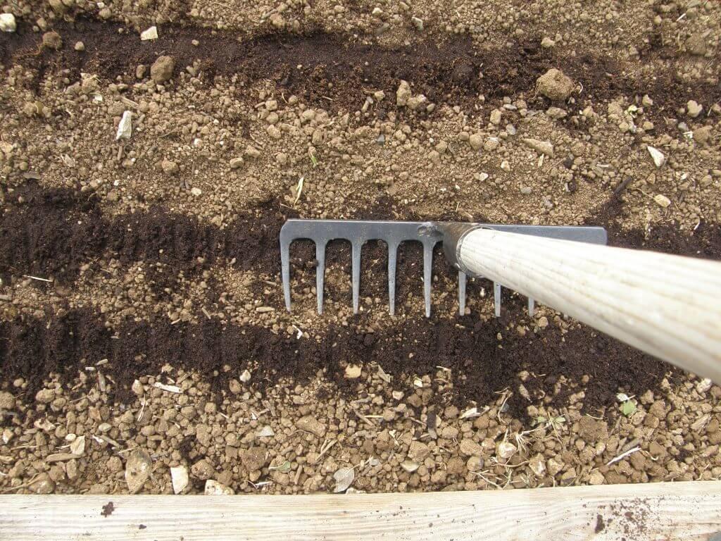 plombage du semis