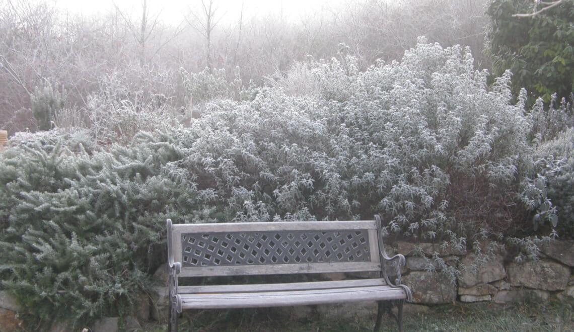 Banc en hiver
