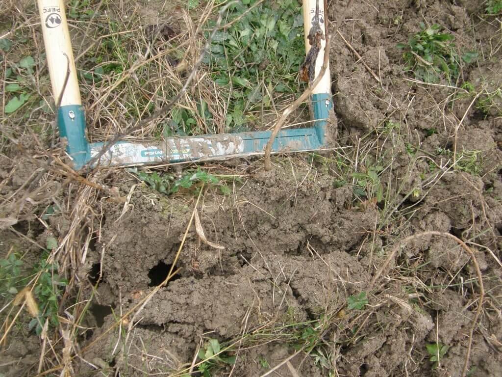 Utilisation de la biogrif Friskars dans un terrain lord qui n'a pas été travaillé depuis un an