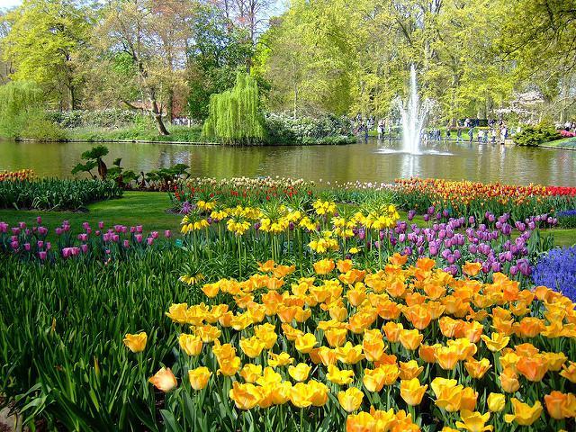 Keukenhof, le parc printanier le plus beau du monde