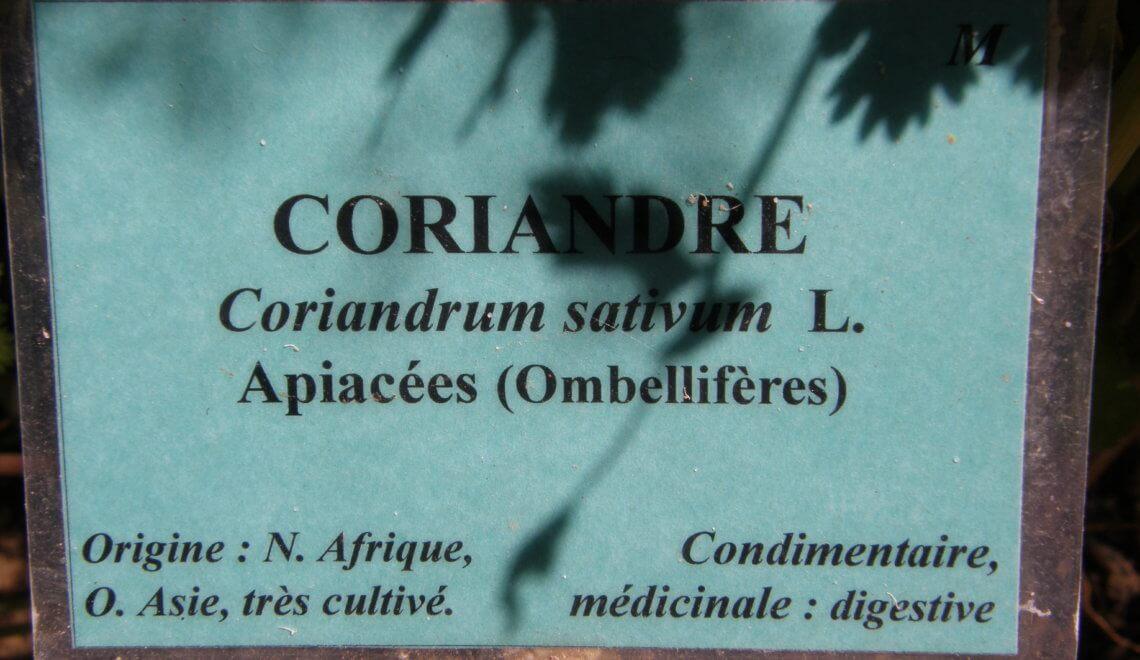 Noms français et latin